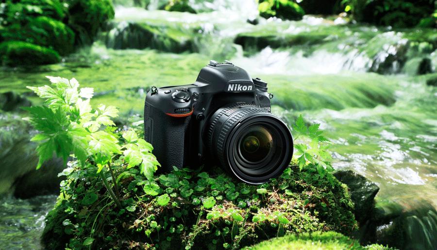 Nikon D750 Ambience