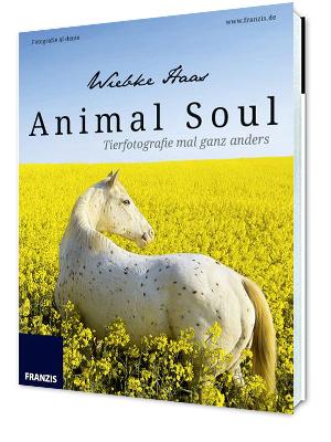 Fotoliteratur Animal Soul Tierfotografie Buch von Wiebke Haas