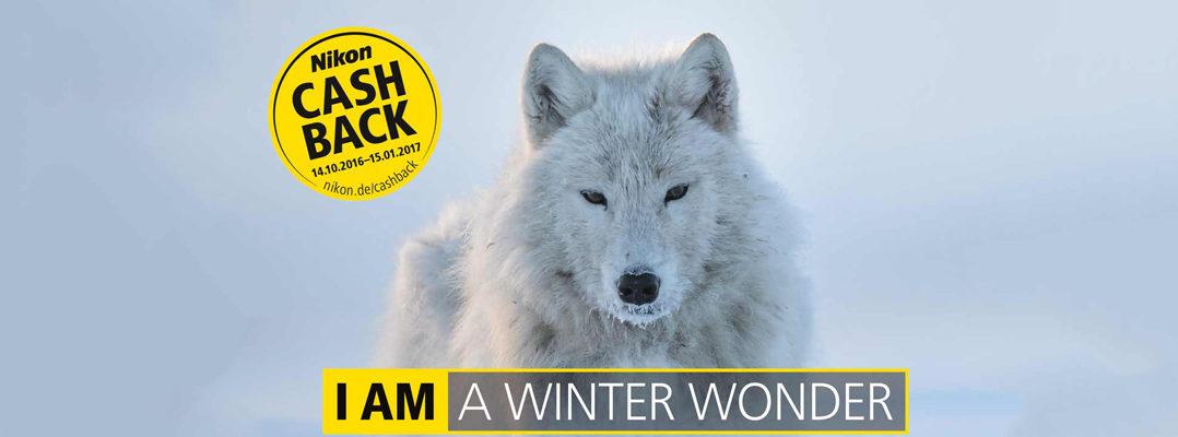 Nikon Winter Cashback bei Foto Seitz in der Nürnberger Innestadt