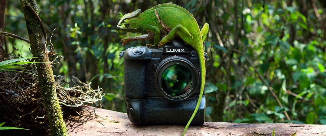 Panasonic Lumix G9 bei Foto Seitz
