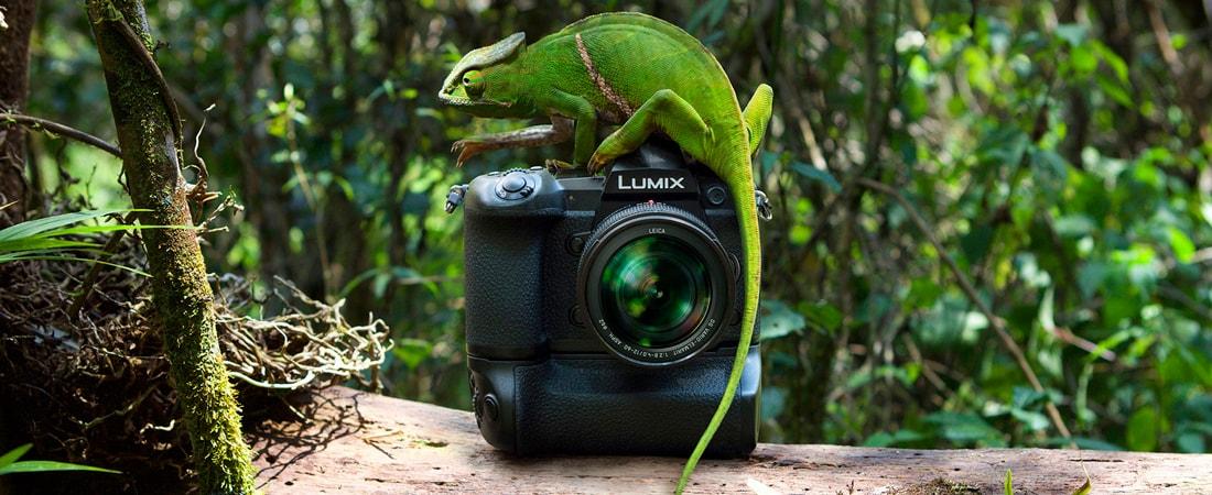 Panasonic-Lumix-G9-bei-Foto-Seitz